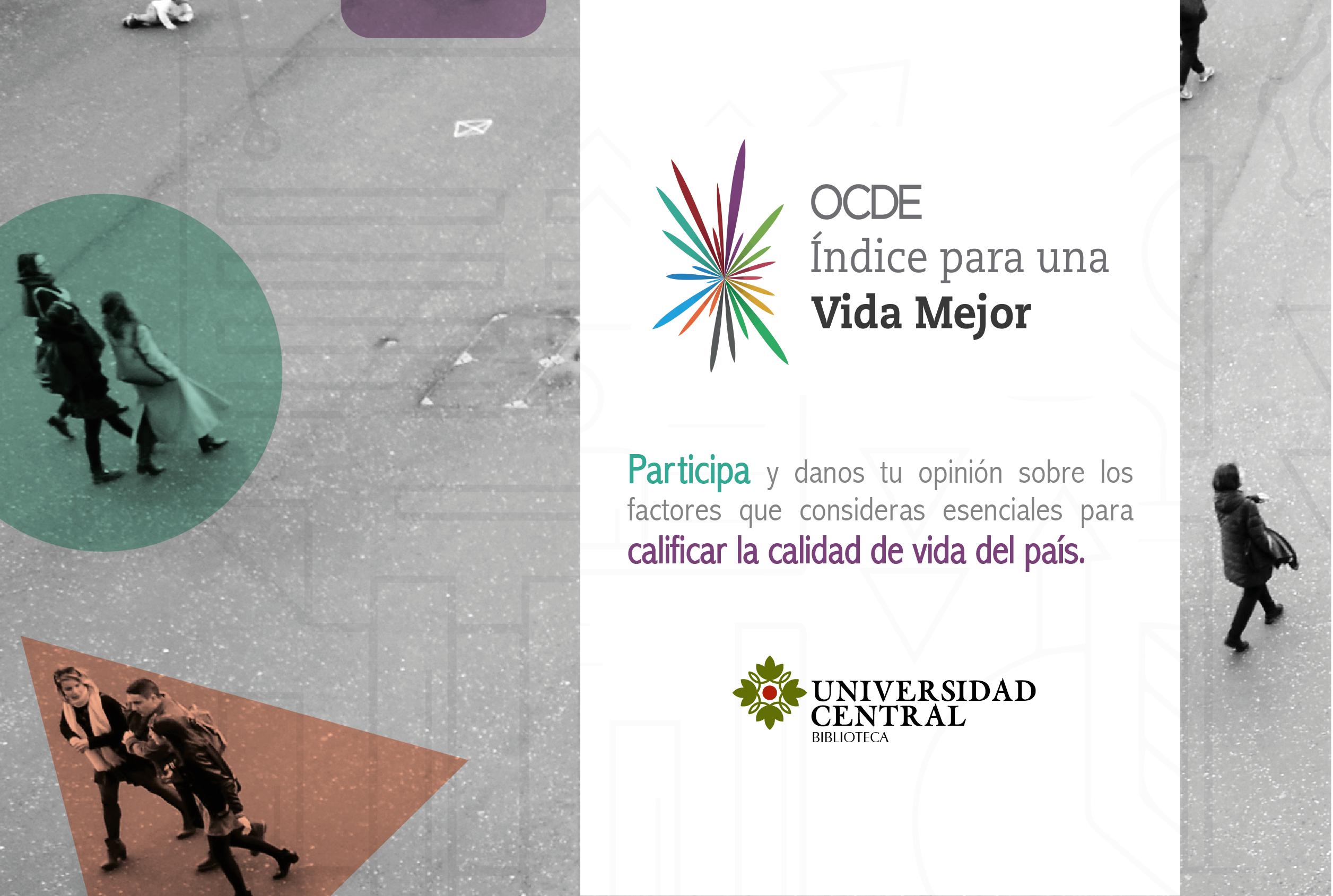 Iniciativa OCDE