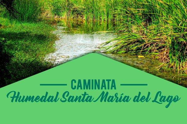 Caminata humedal Santa María del Lago