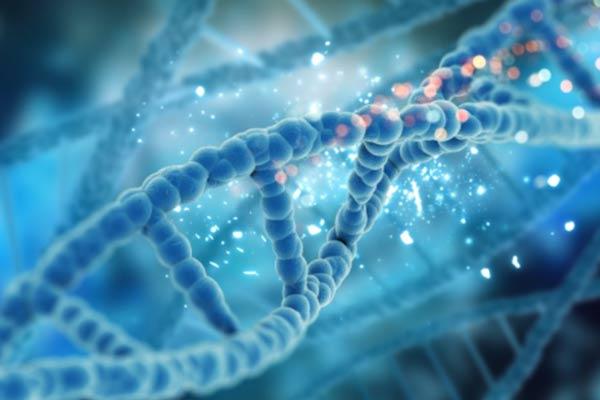 Búsqueda de nuevas moléculas para antibióticos