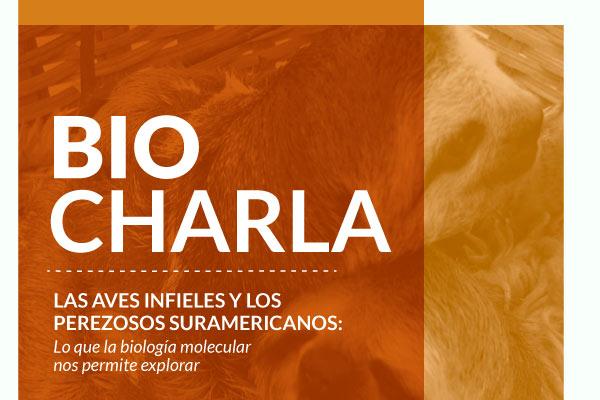 BioCharla: Las aves infieles y los perezosos suramericanos: lo que la biología molecular nos permite explorar