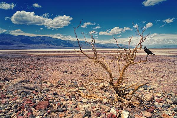 El cambio climático no solo impacta en las altas temperaturas