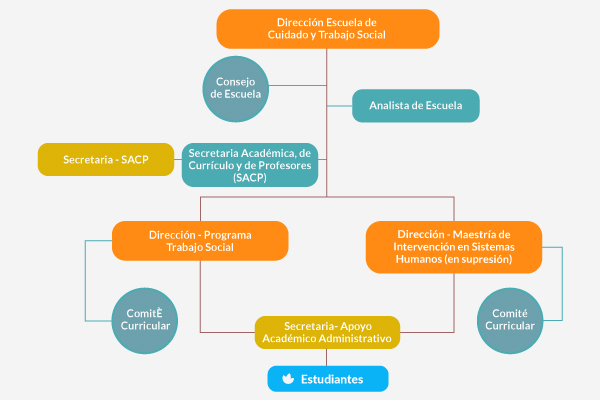 estructura ects